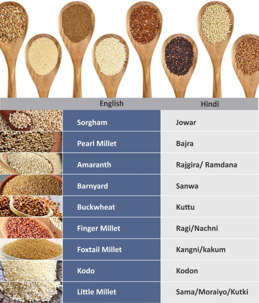 glossary millets