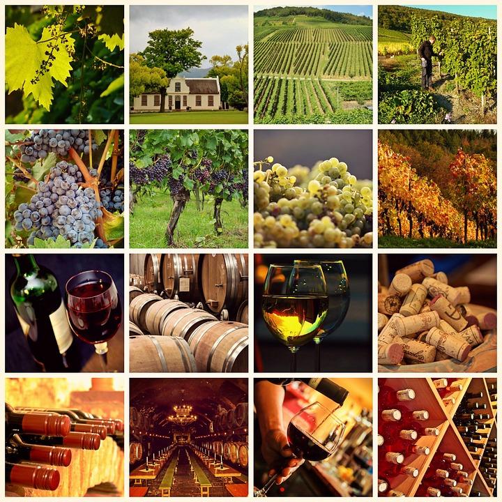 wine-1597376_960_720